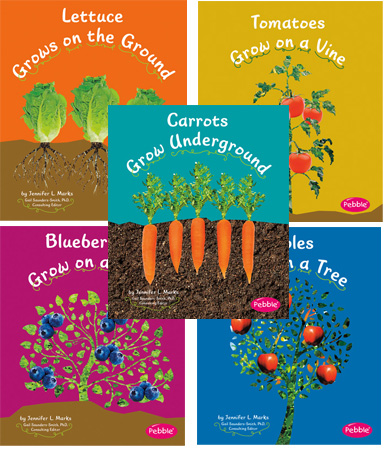 How Fruits and Vegetables Grow Book Set, Set of all 5