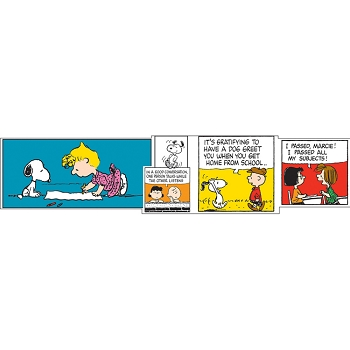 Peanuts Comic Blocks - Extra Wide Die-Cut Deco Trim