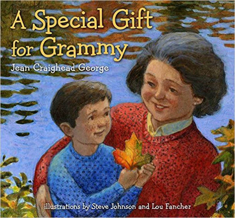 A Special Gift for Grammy, Hardcover Book.