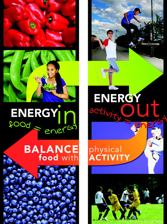 Learning ZoneXpress Poster Set - Energy In & Energy Out - Set of 2