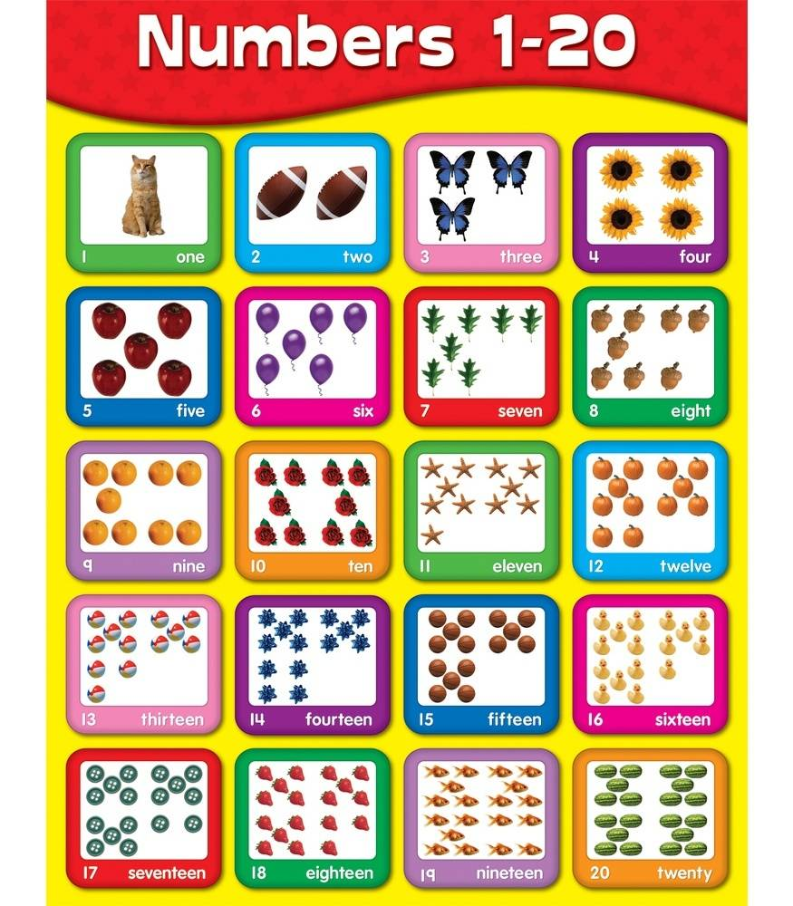 image about Printable Number Chart 1 20 known as Quantities 1-20 Chart