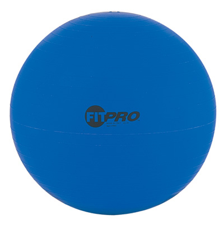 Fitpro Training & Exercise Ball, 53cm