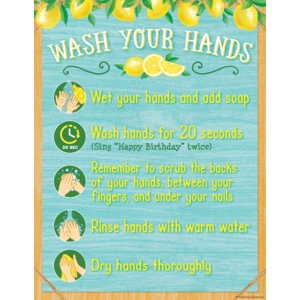 Wash Your Hands - Lemon Zest Chart