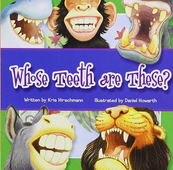 Whose Teeth Are These? Board Book
