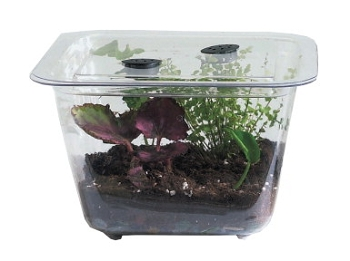 Hubbard Scientific Student Aquarium/Terrarium - 1 1/2 Gallon - Plastic
