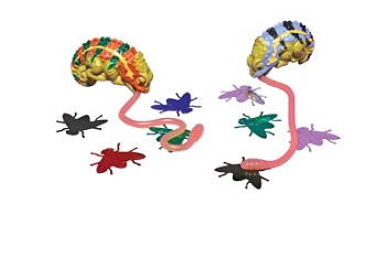 Play Visions Lizard Lunch Game Set - Set of 3