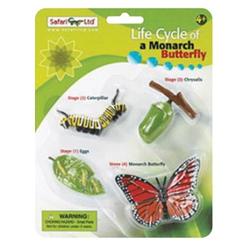 Safari LTD. Models Life Cycle of A Monarch Butterfly