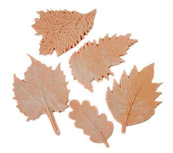 Sax Large Leaf Nature Impression Set - Assorted Size, Tan - Set of 5