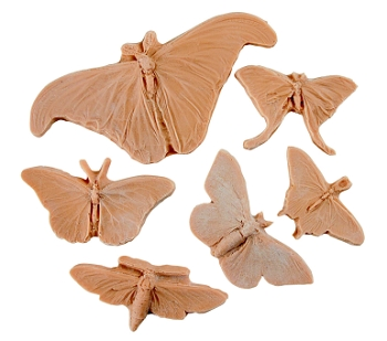Sax Butterflies and Moth Nature Impression Set - Assorted Size, Tan - Set of 6