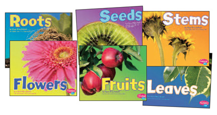 Plant Parts Book Set - Set of all 6
