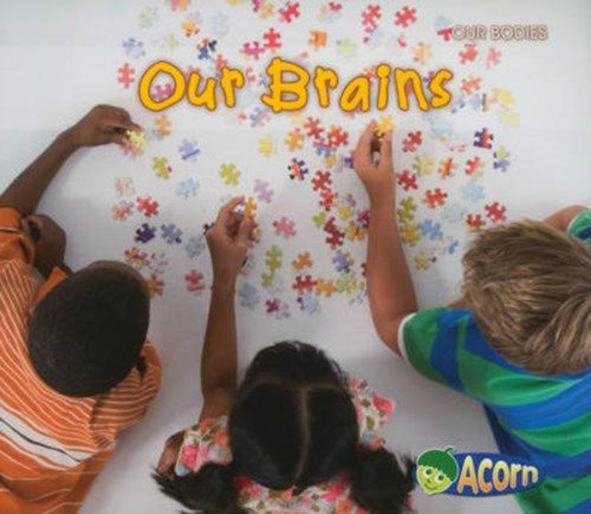 Our Brains