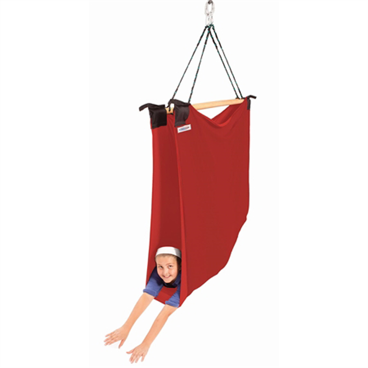 TheraGym  Large Chillax Swing