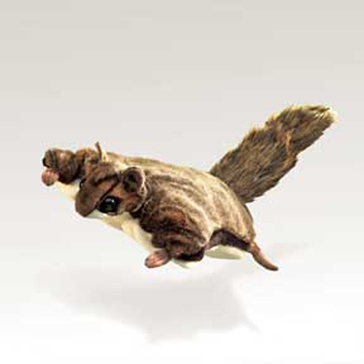 Squirrel, Flying