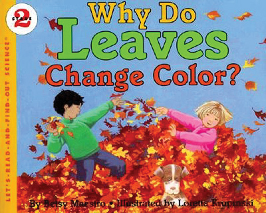 Why Do Leaves Change Colors?