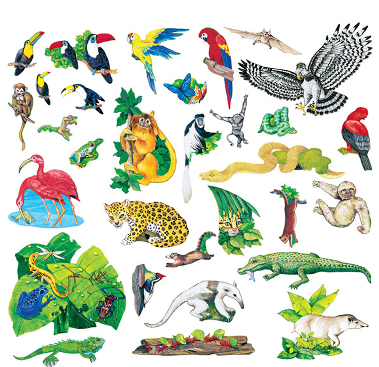 Rain Forest Animals - Felt Set
