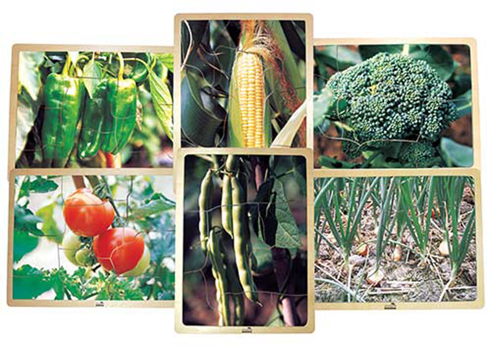 Growing Up Green Healthy Eating Vegetable Puzzles