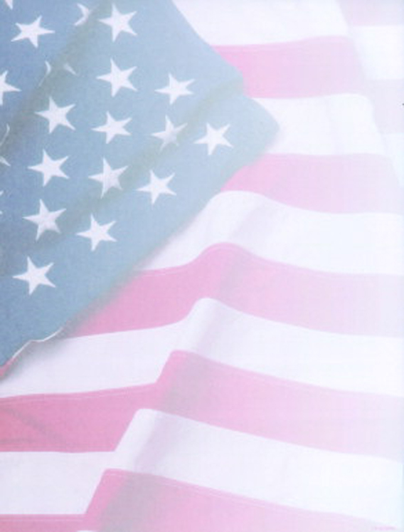 Acid-Free Flag Design Desktop Publishing Paper - 100 Sheets - Pack of 100