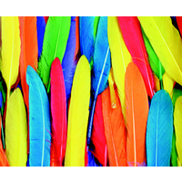 Chenille Kraft Non-Toxic Short Colored Duck Quill - Assorted Color, 1/2 oz - Pack of 90