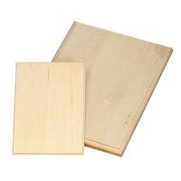 Walnut Hollow Basswood Lightweight Rectangle Plaque