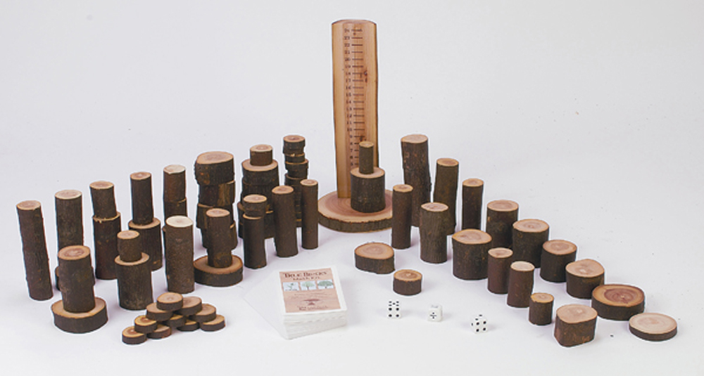 Tree Blocks Math Kit - Very Limited Supply